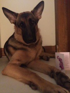 """This is me, Axel. This is my Thank You card, I will call him """"Steve the Thank You Card"""""""