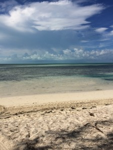 Loved this beach... Coco Cay